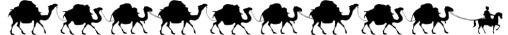 Camels_Long_CUT