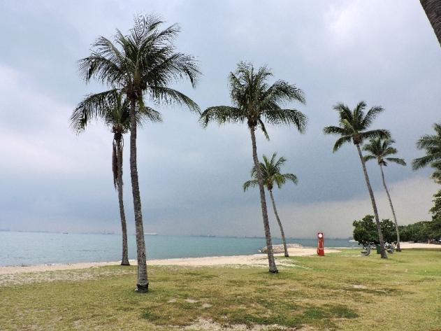 26. the beach