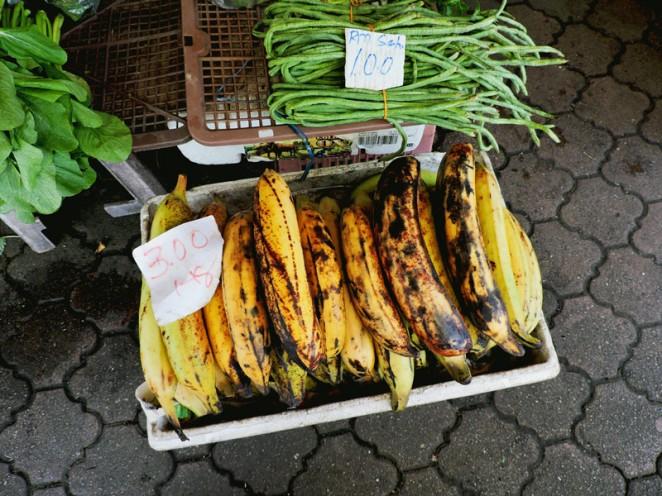 Dylgi-banani