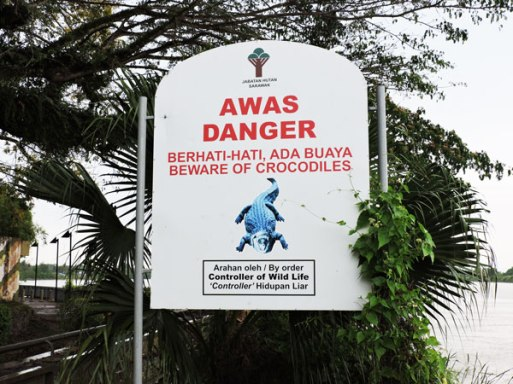 Opasnost-krokodili