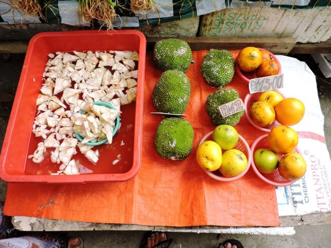 green-jackfruit