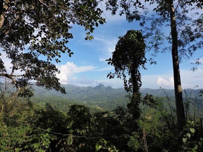 south-sumatra