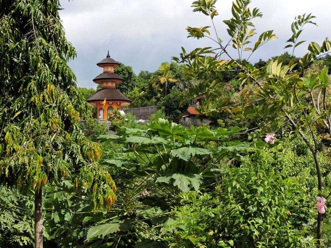 budistkija-hram