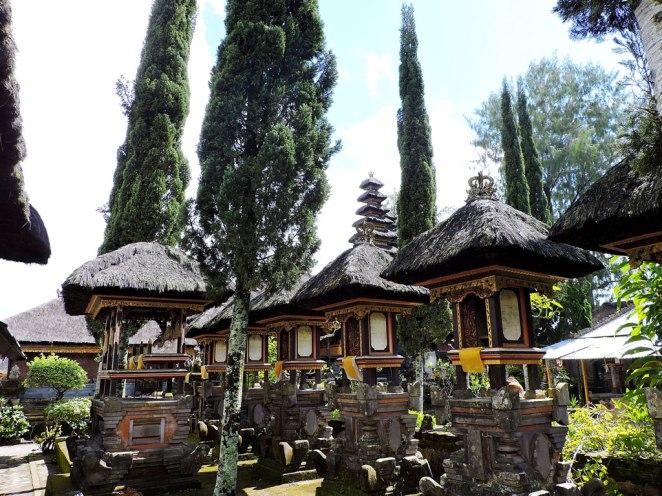 gybopodobni-hramcheta