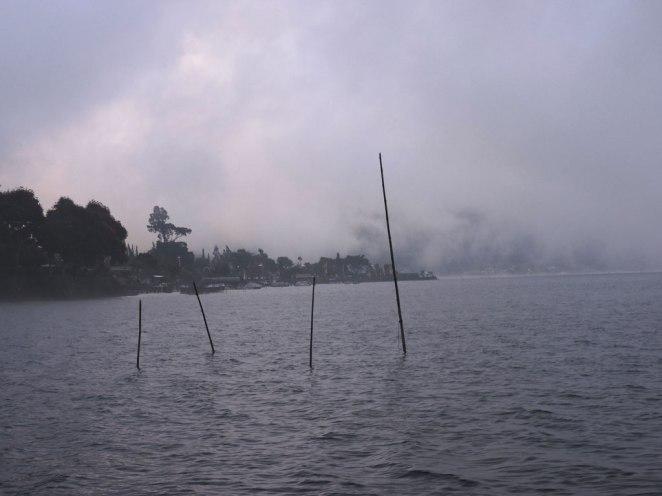 mygla-na-ezeroto