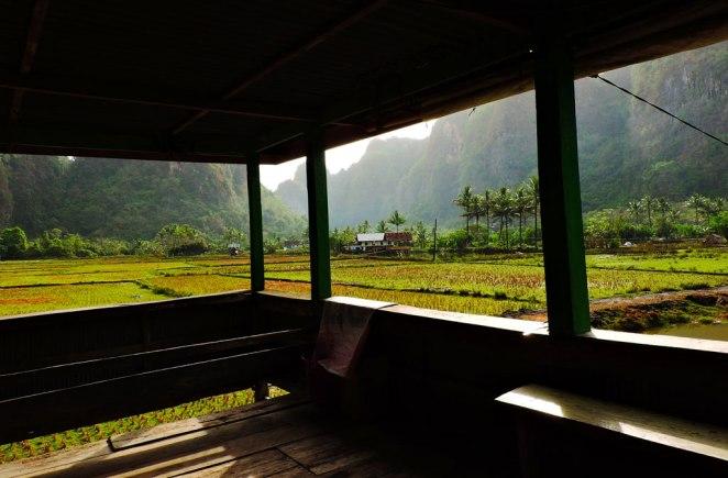 gledka-ot-verandata