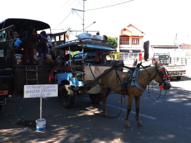 mestno-taxi