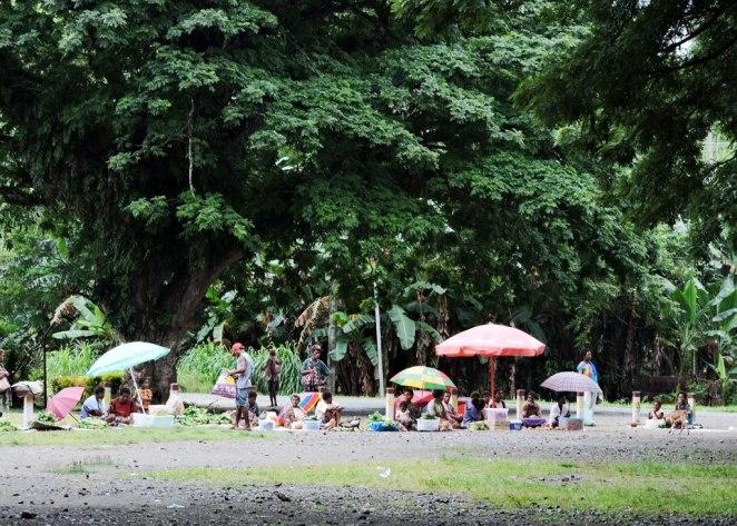 pazara-po-debela-sqnka-na-rain-trees